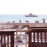 Café – Bistro mit schöner Terrasse direkt am Strand von Paguera / Mallorca