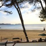 Bar/Bistro in TOP Lage von Paguera auf Mallorca zur Miete