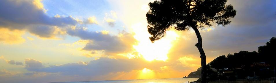 Beach Club in Paguera auf Mallorca zur Übernahme – Top Gelegenheit